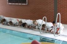 zwembad04